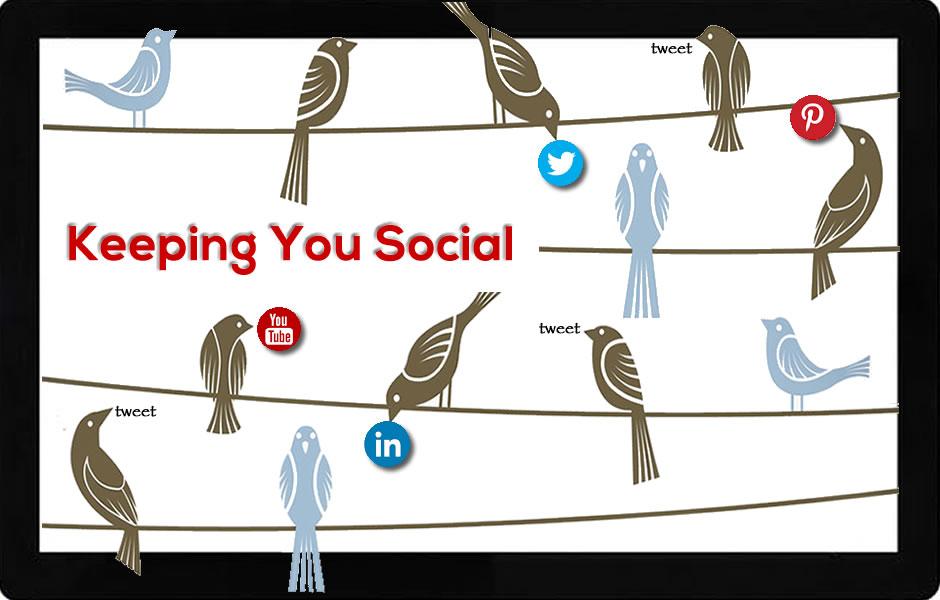 social media coordinator